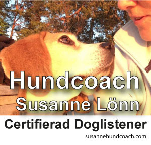 Susanne Lönn Hundcoach